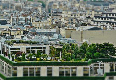 roof-terrace-1423897_640