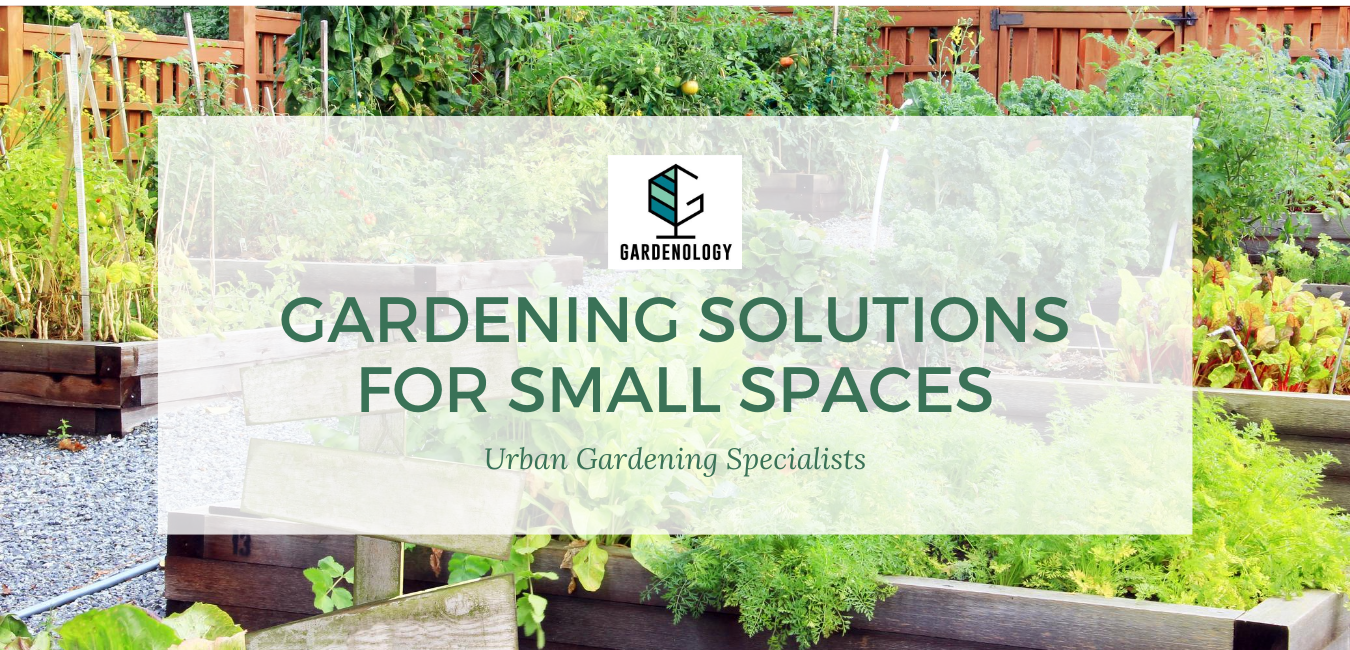 Copy of Green Gardening & Landscaping Service Business_Advertising Website(1)